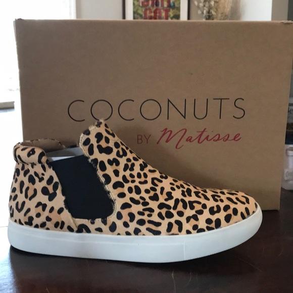 coconuts harlan leopard